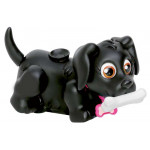 products-pet-parade1.jpg